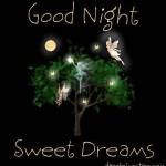 Sweet Good Night