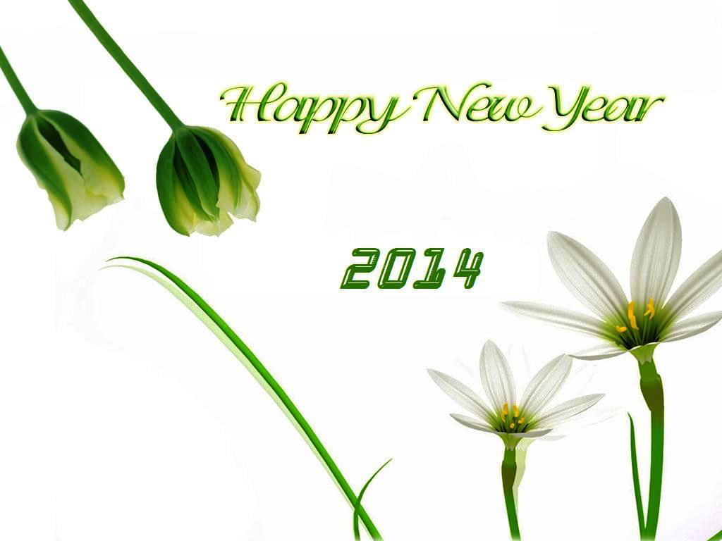 HD Cute Happy New Year 2014 Wallpaper