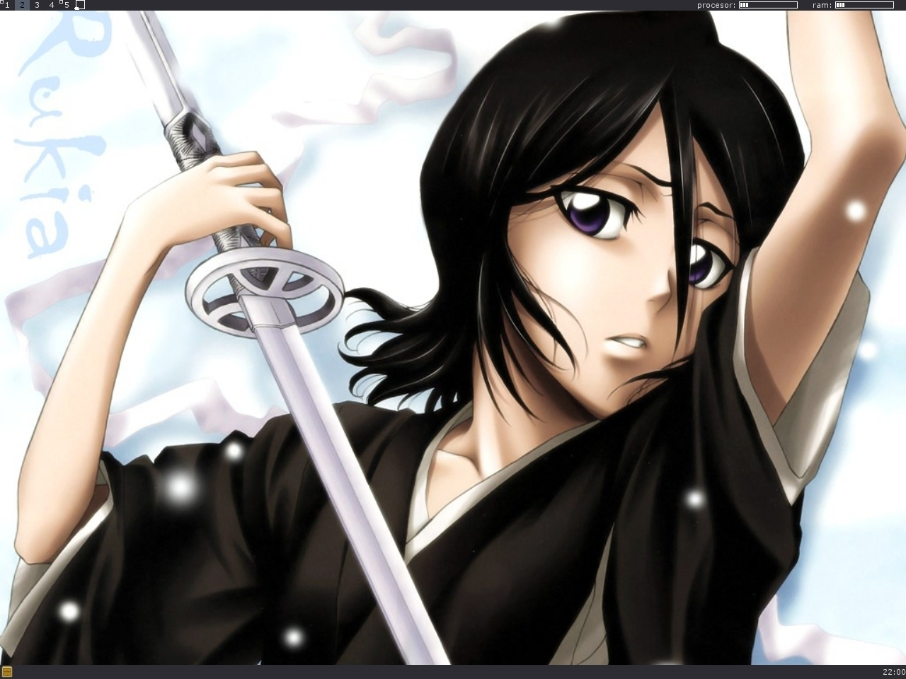Bleach  Wallpaper & Photo