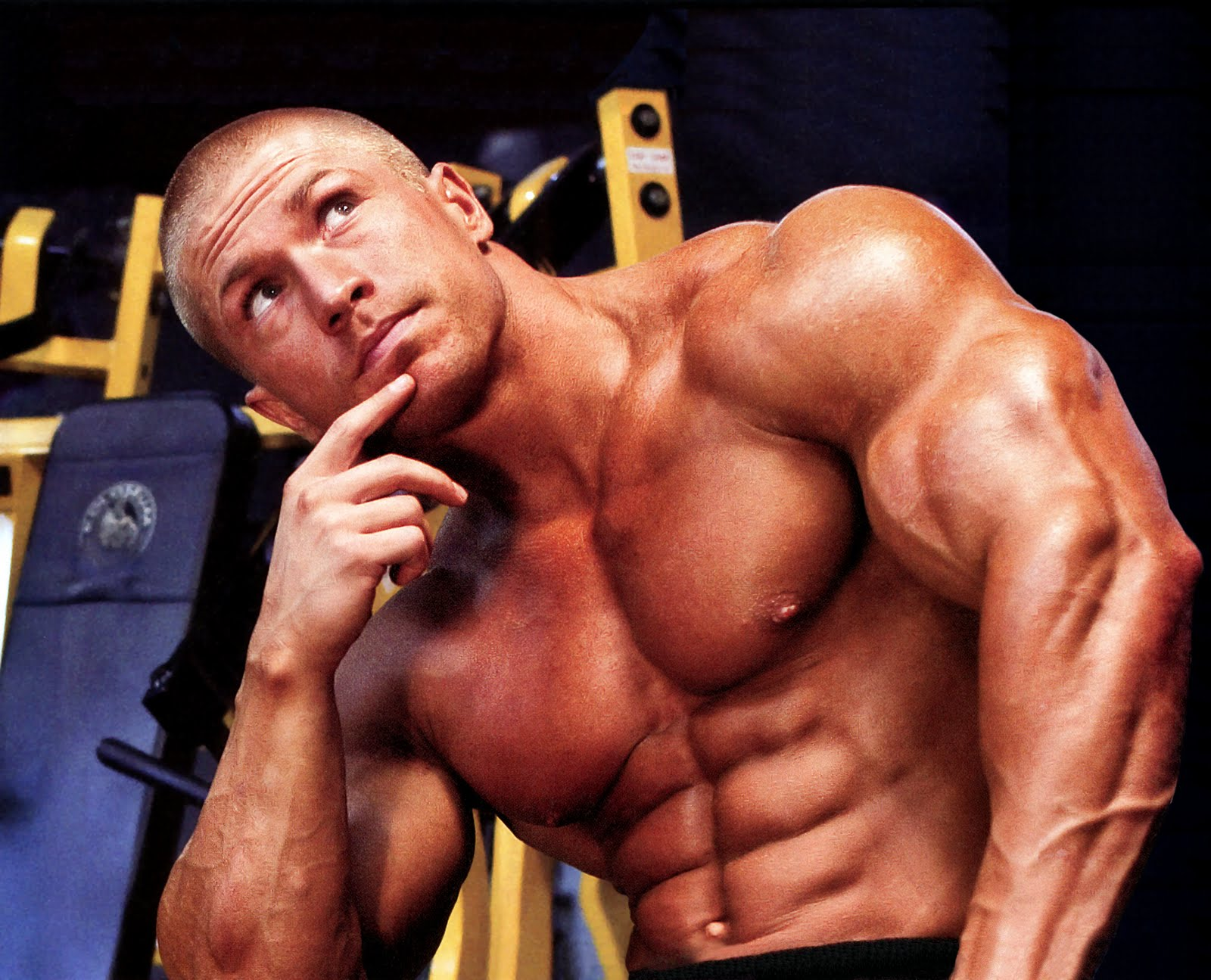 Bodybuilding Photo
