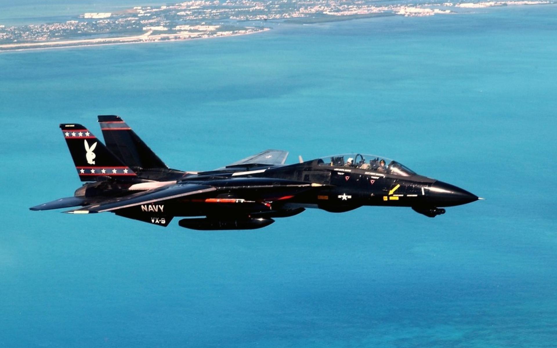 F 14 Tomcat Images & Pictures