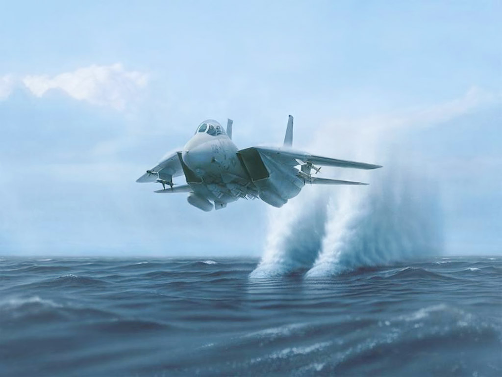 F 14 Tomcat wallpaper & picture