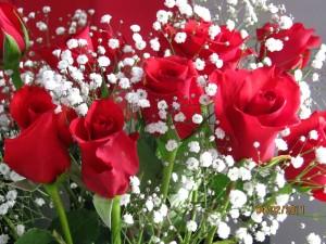 Happy Marriage Anniversary Wish