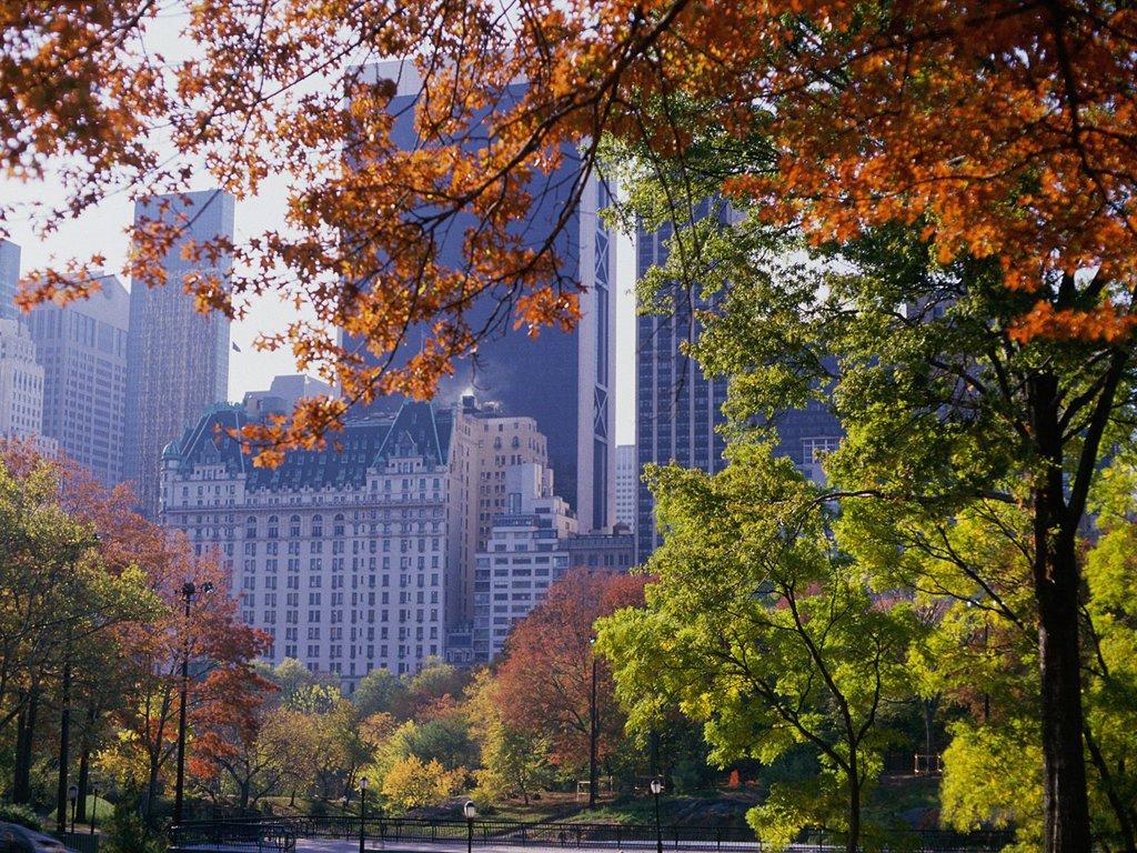 New York Autumn Hd Photo