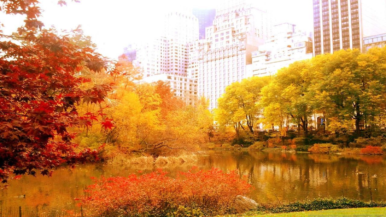 New York Autumn Images & wallpaper