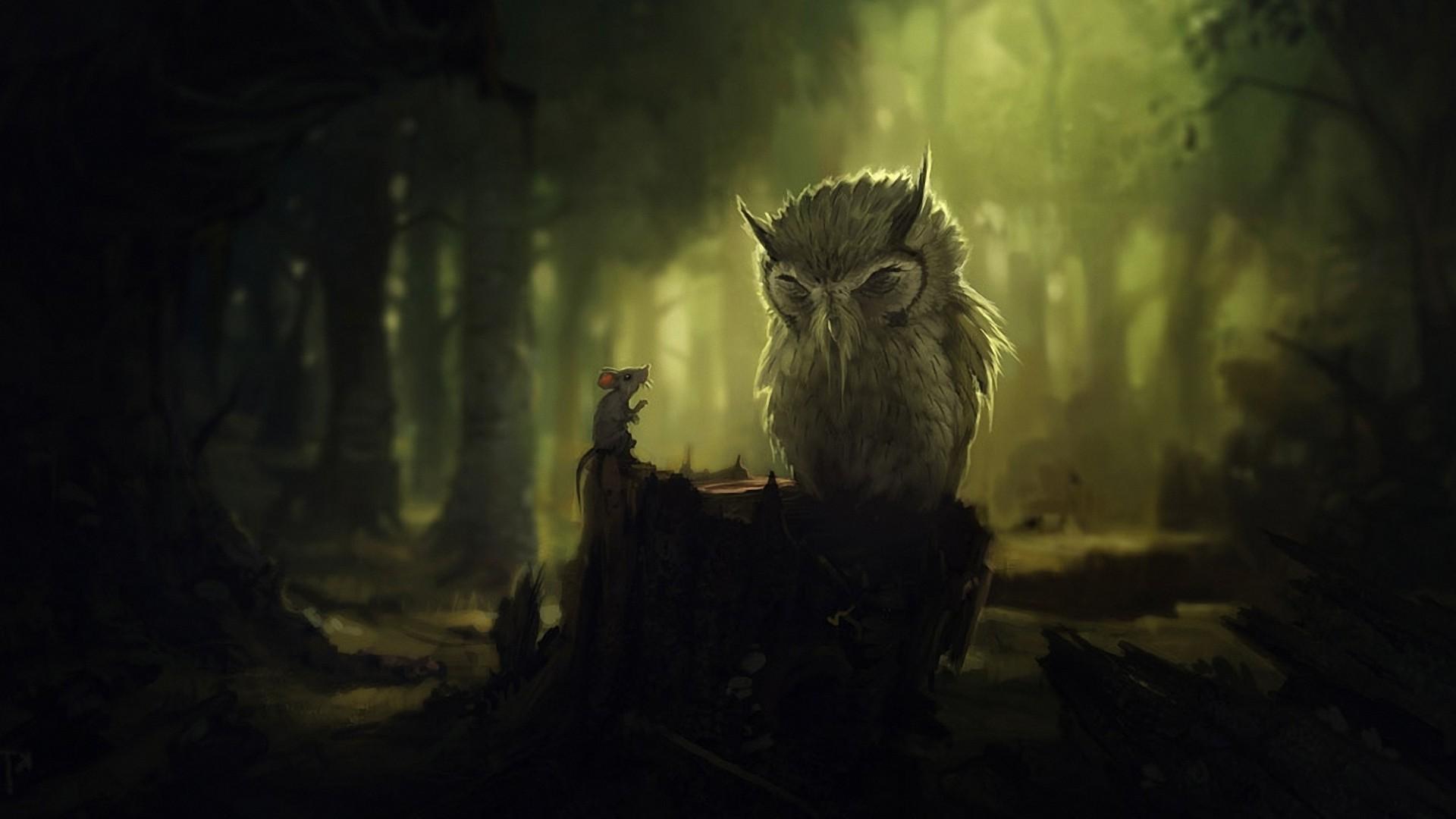 Owl Drk Wallpapers