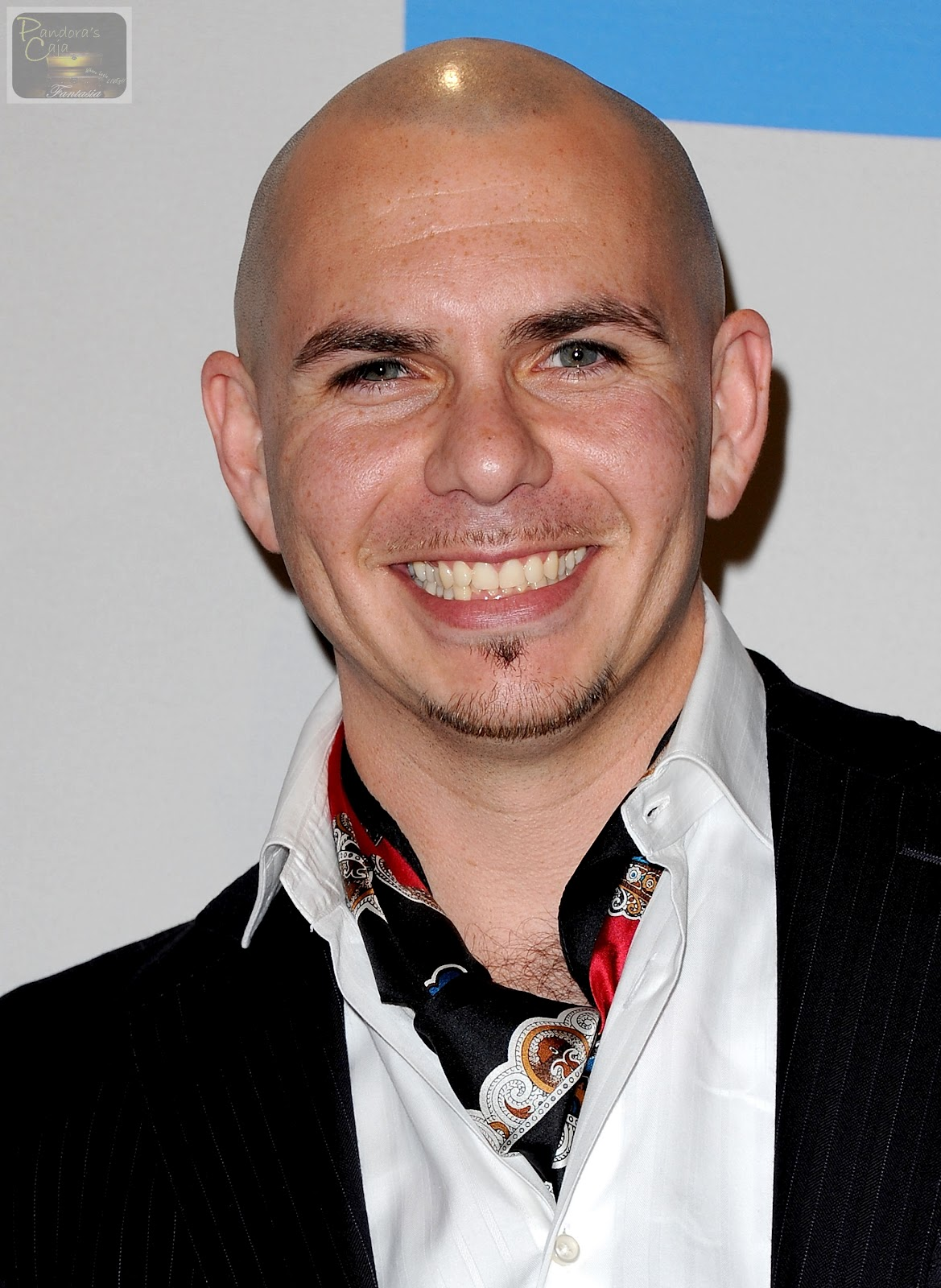 Pitbull Rapper Picture & wallpapers