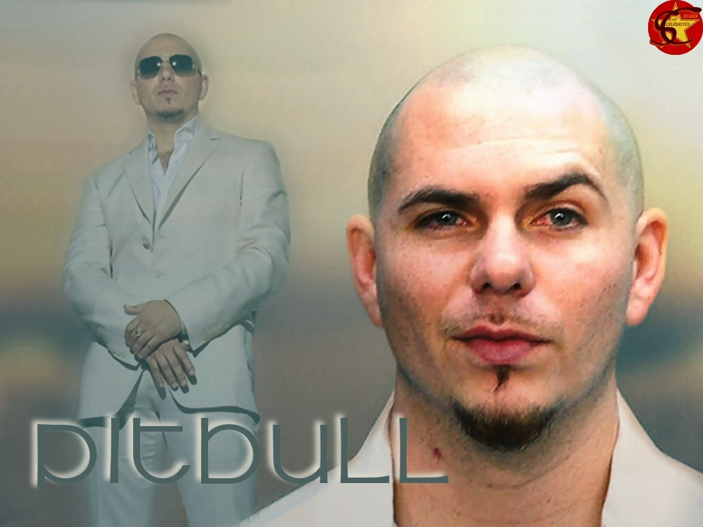 Pitbull Rapper images & wallpaper