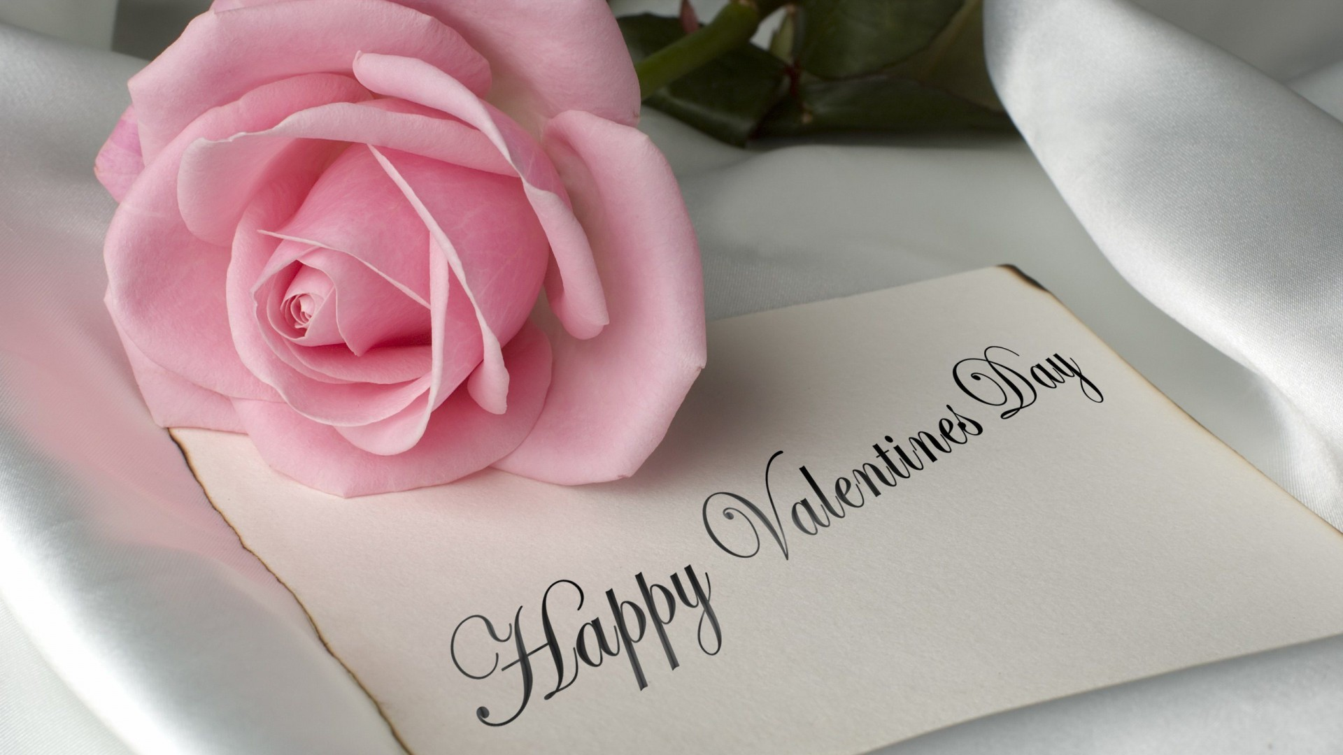 Valentine's Day  Pictures & images