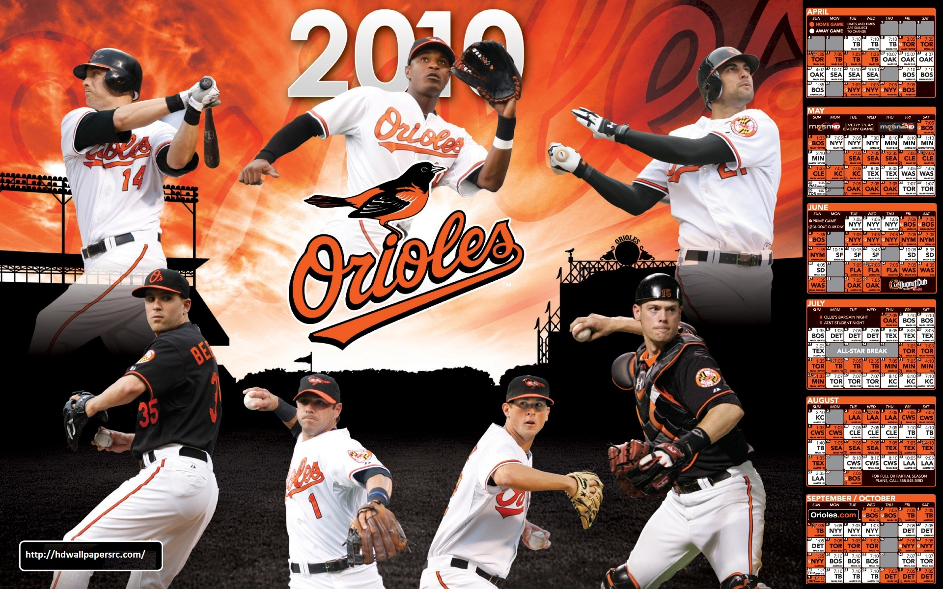 Baltimore Orioles  Wallpapers & Images