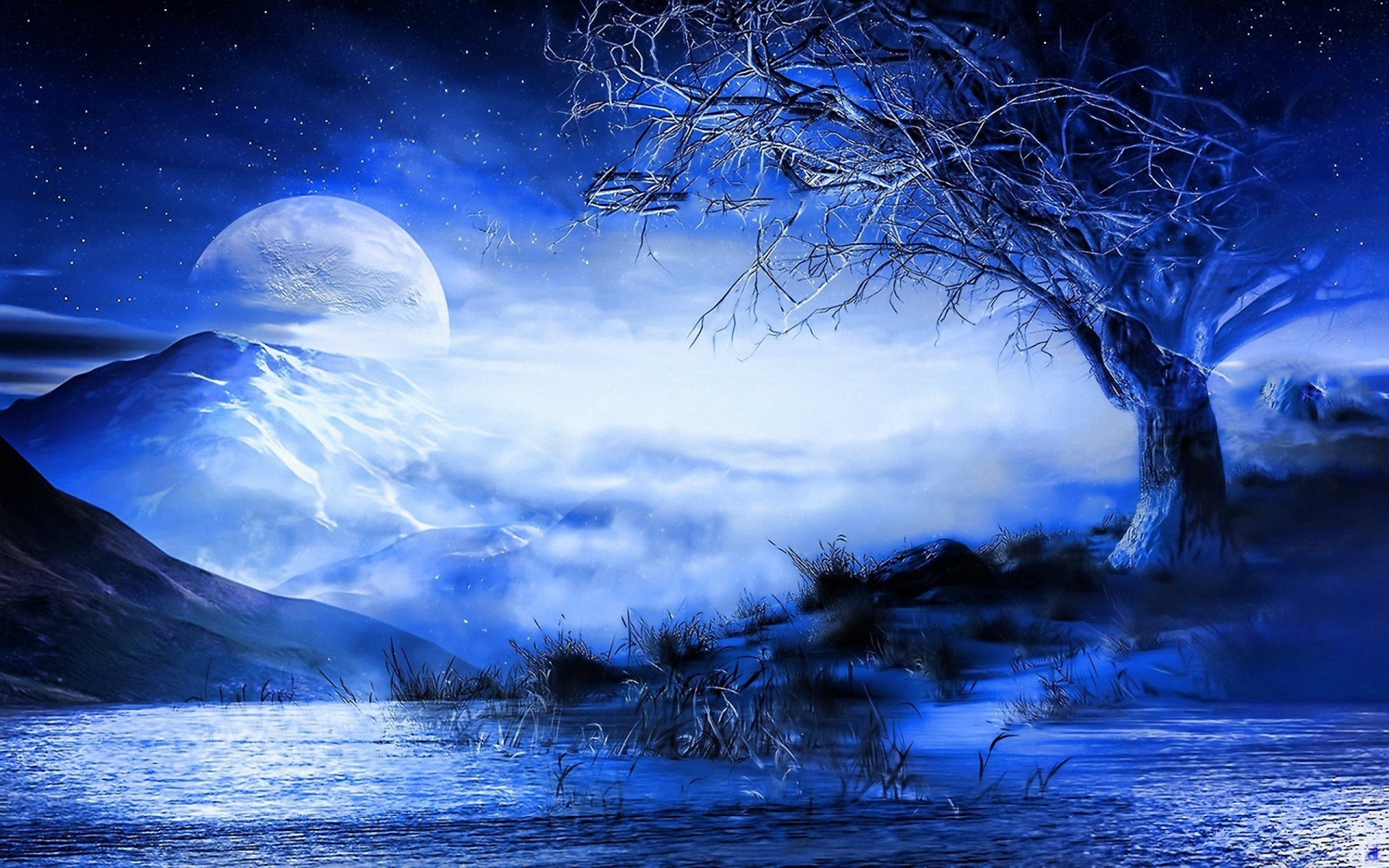 Blue Moon HD Wallpapers & Pictures