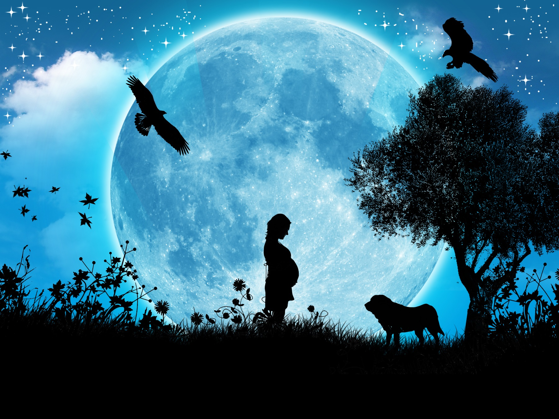 Blue Moon Wallpapers & Photo