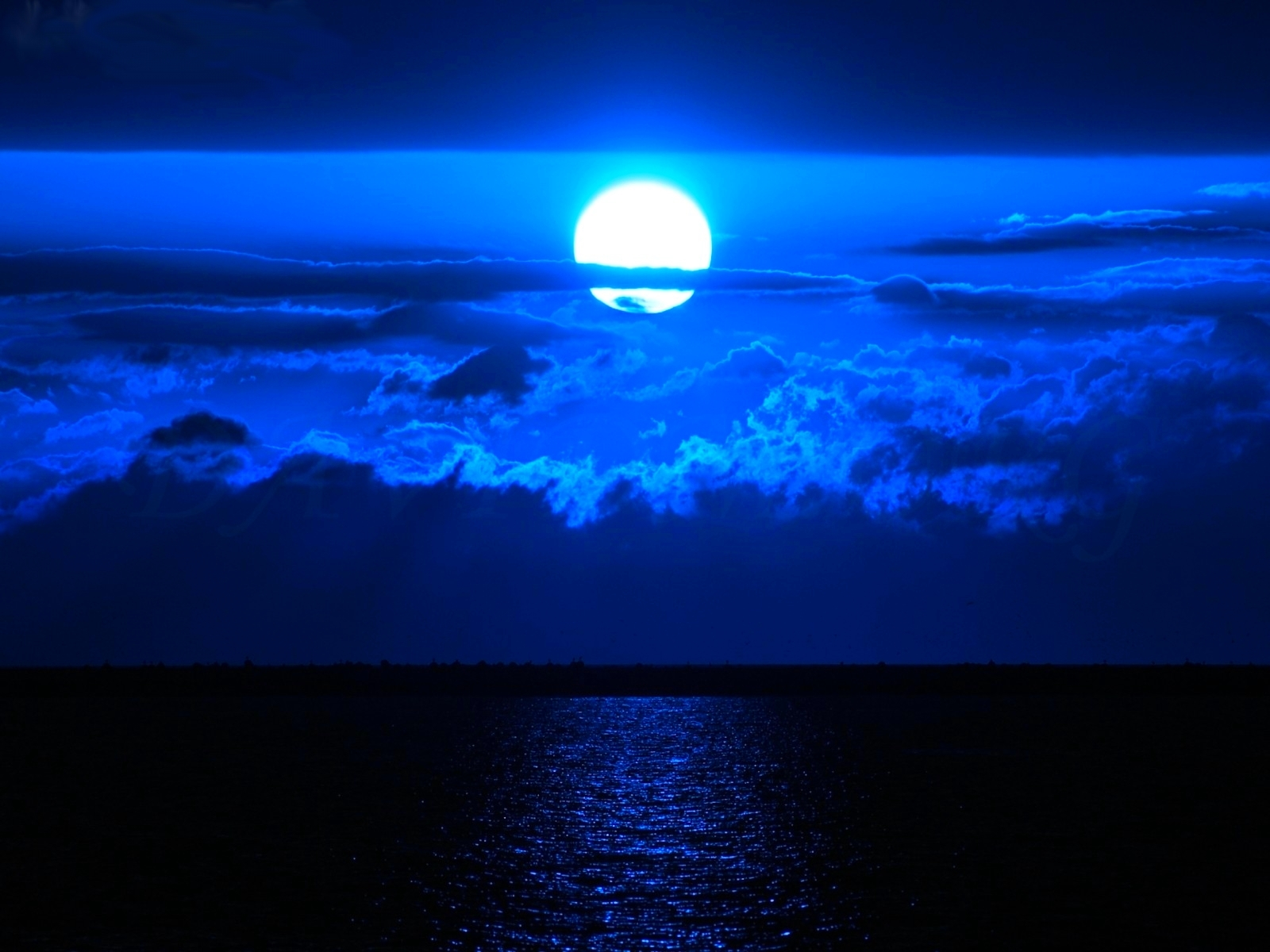 Blue Moon Wallpapers & Pictures