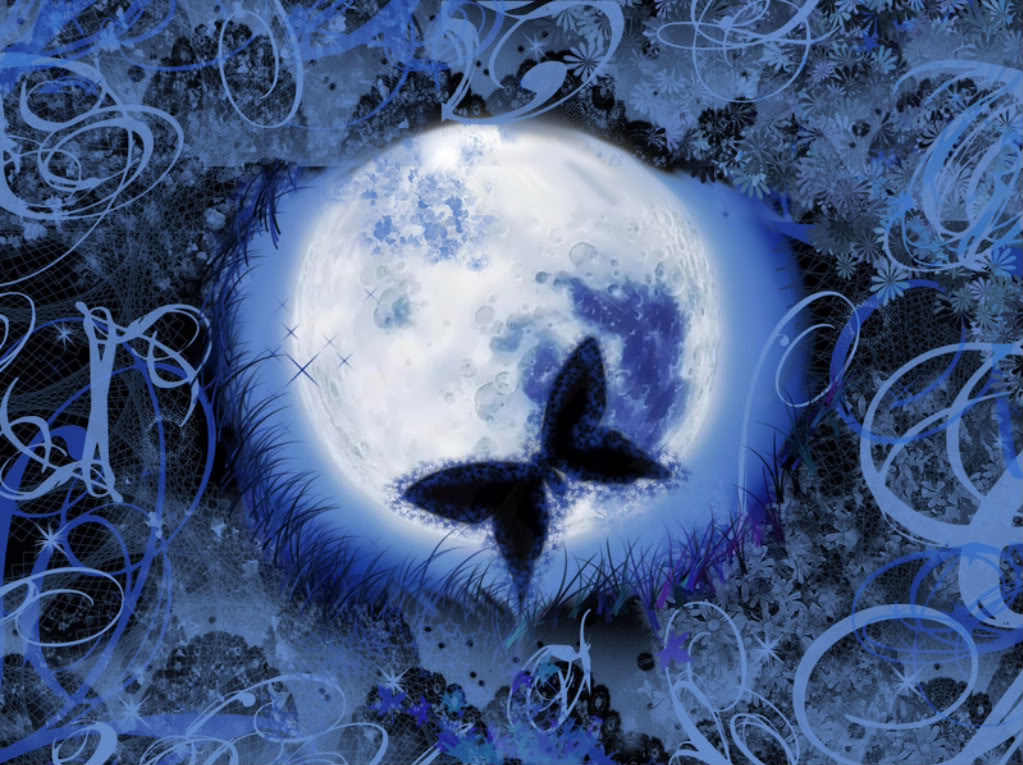 Butterfly with Blue Moon Wallpapers