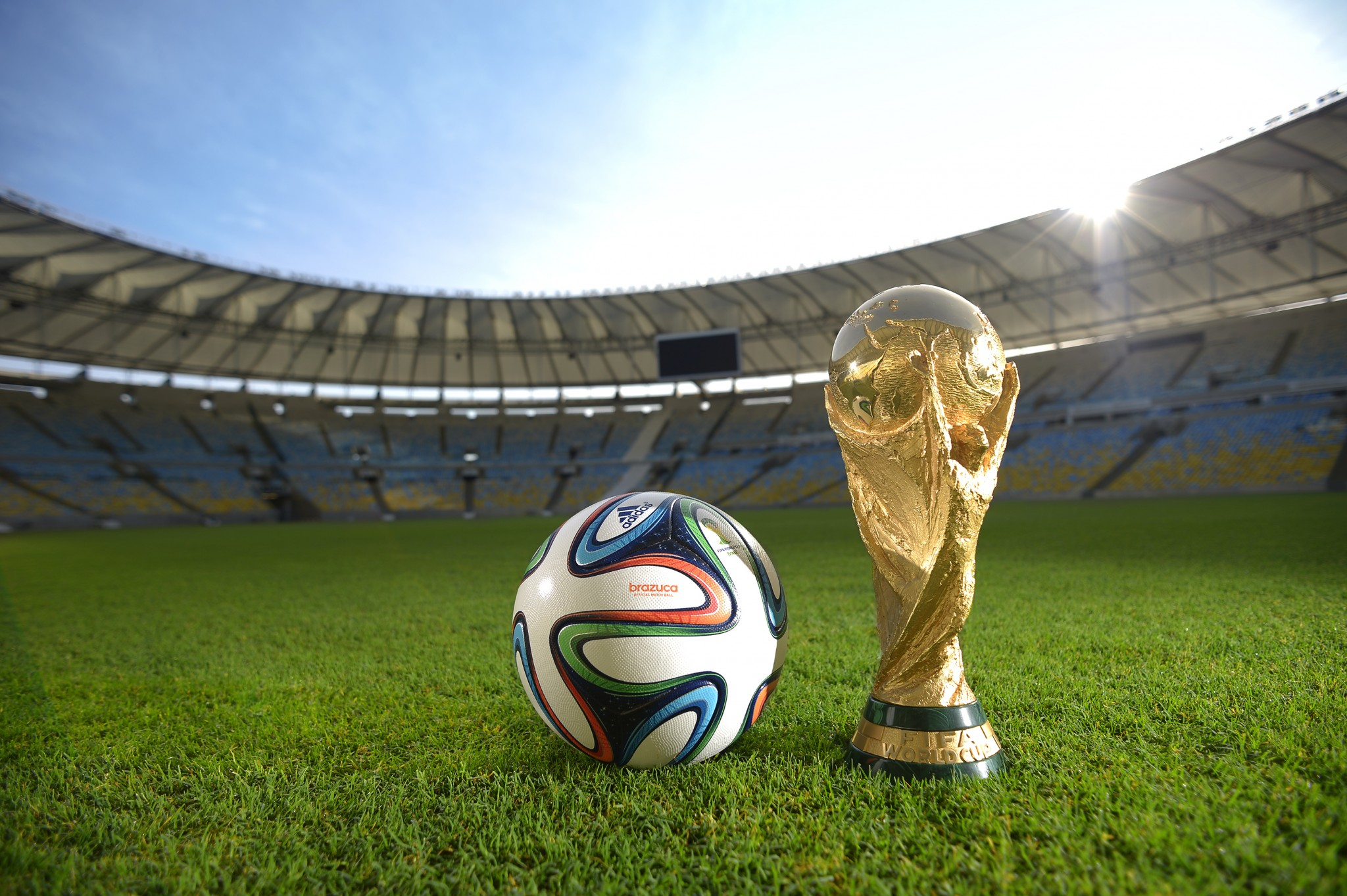 FIFA World Cup Brasil 2014 Trophy