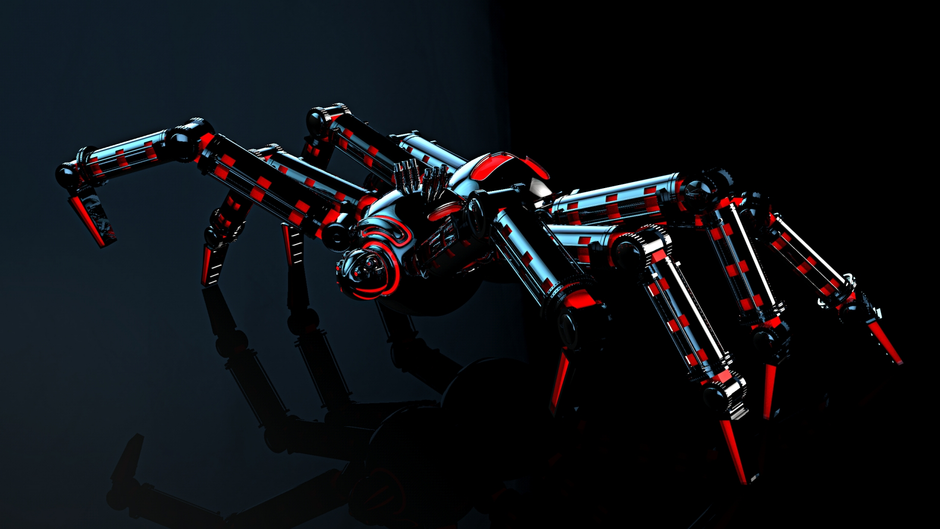 Spider Photos & wallpapers