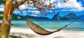 Amazing_Cute_Hammock_Beach_Image