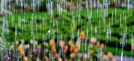 Close_Up_of_Rain_Drops_Wallpaper