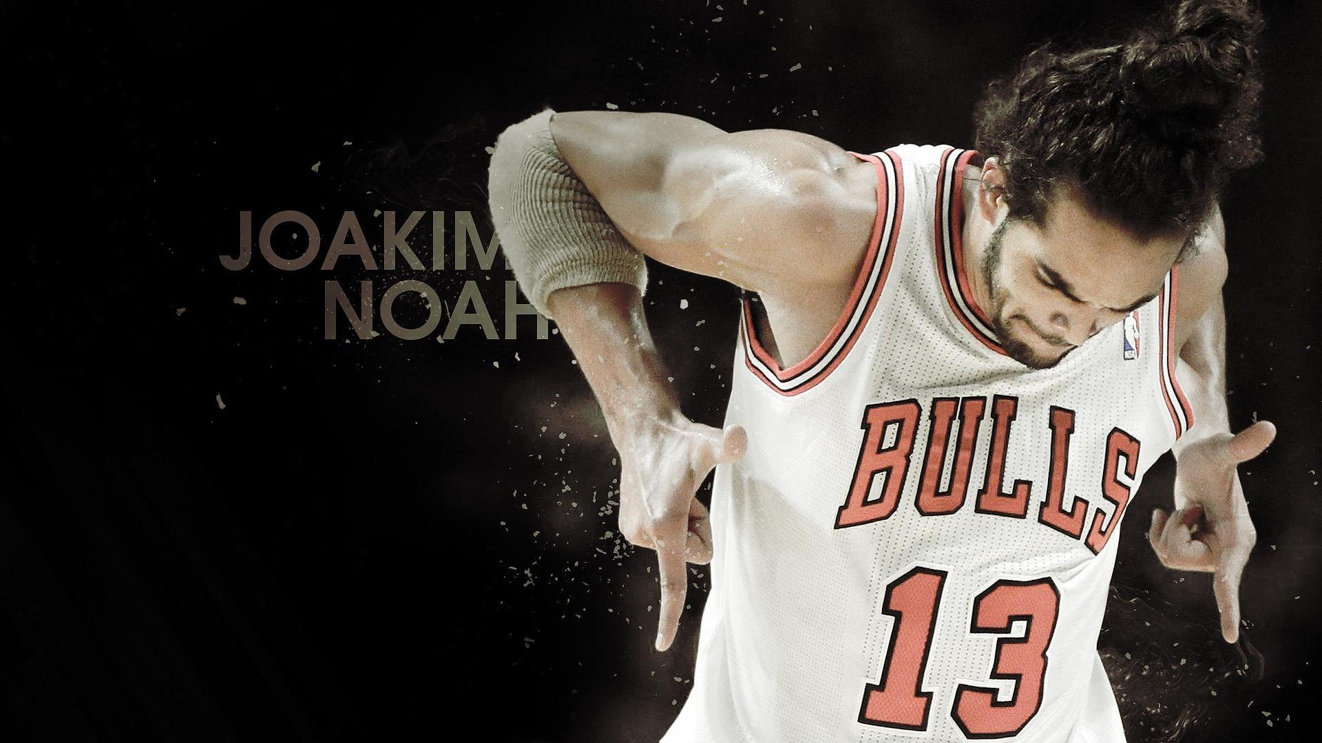 Joakim Noah 2014 NBA Wallpaper
