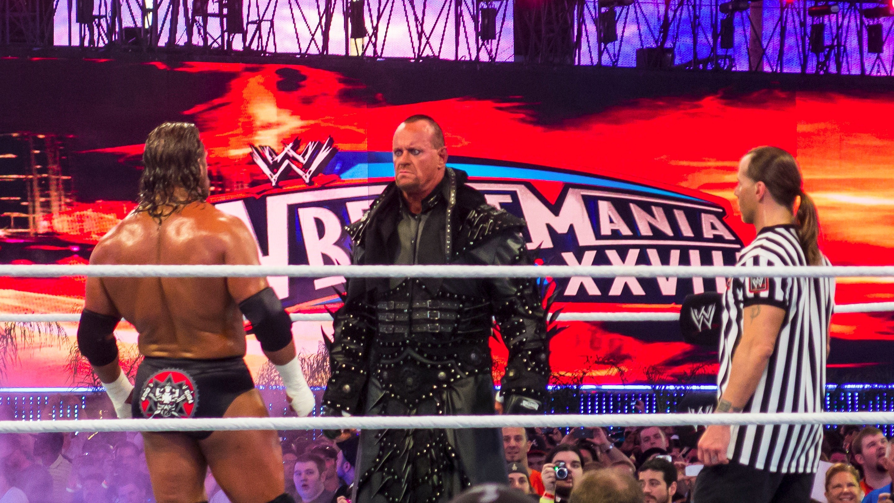 The Undertaker VS Triple H and Shawn Michaels