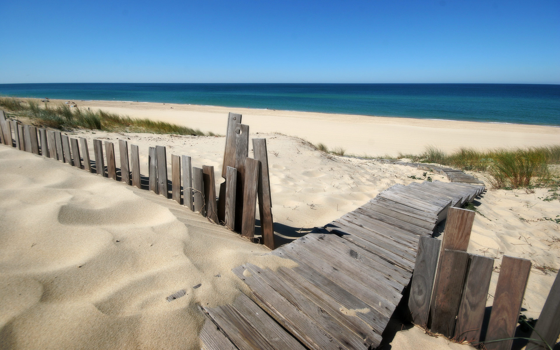 beach steps images