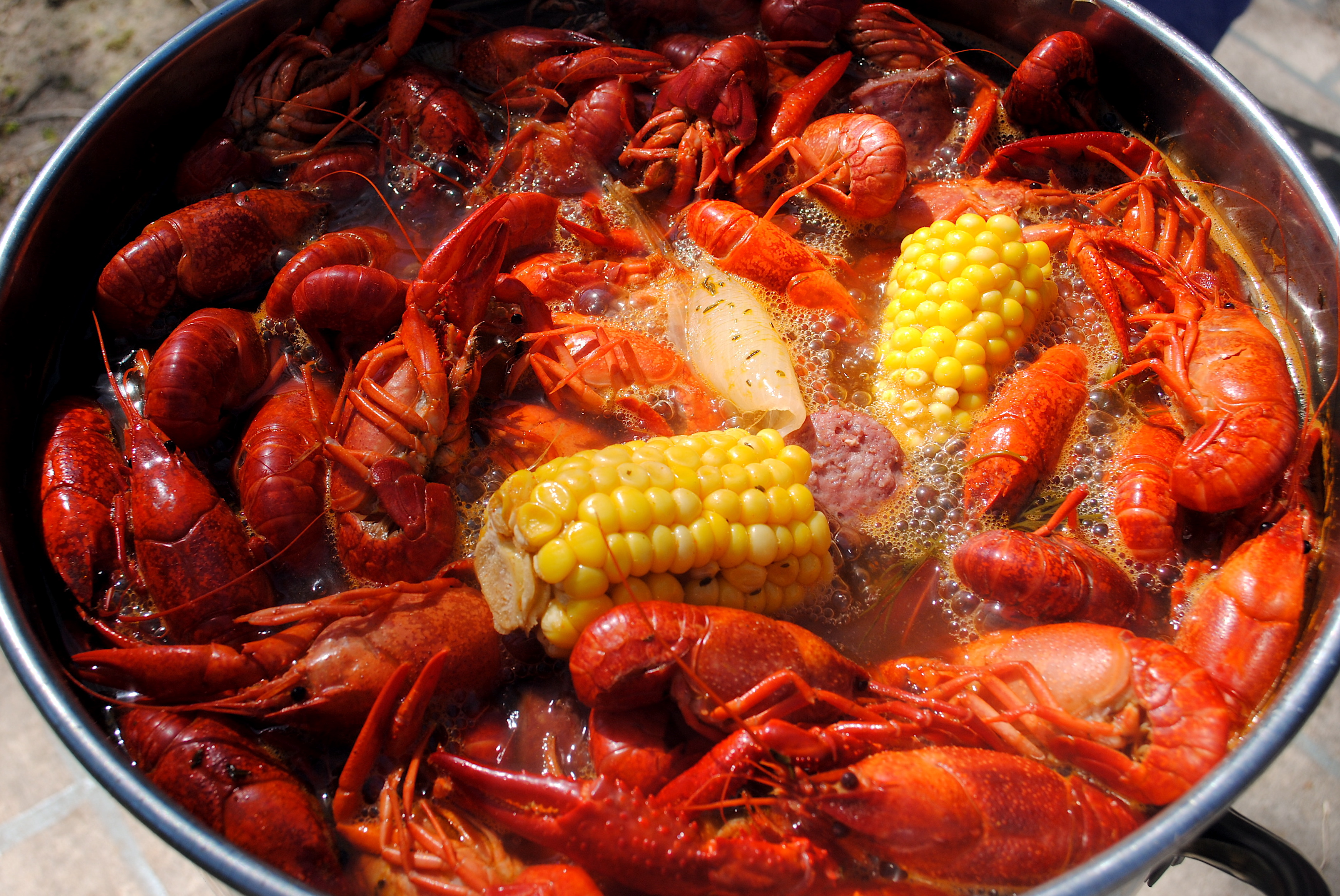 how to purge crawfish