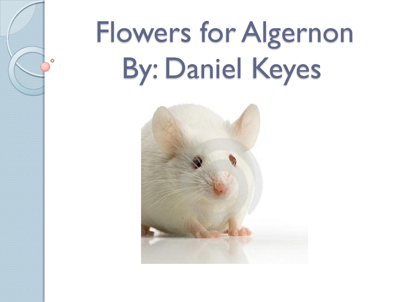 flowers-of-algernon