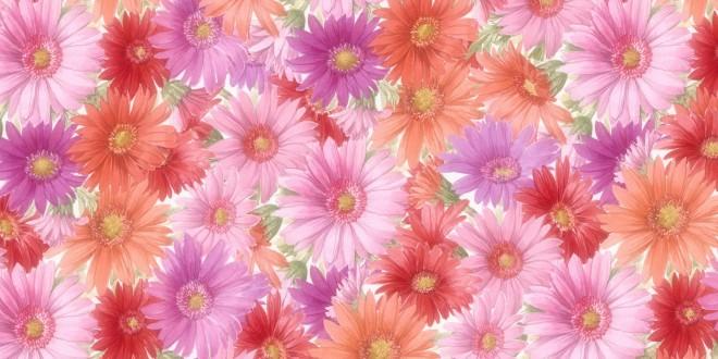 flowers-wallpaper-155