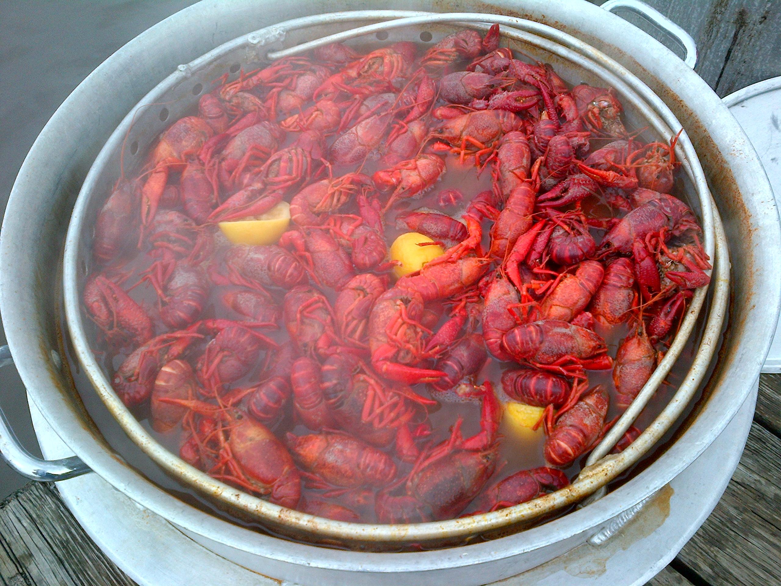 tabasco crawfish boil
