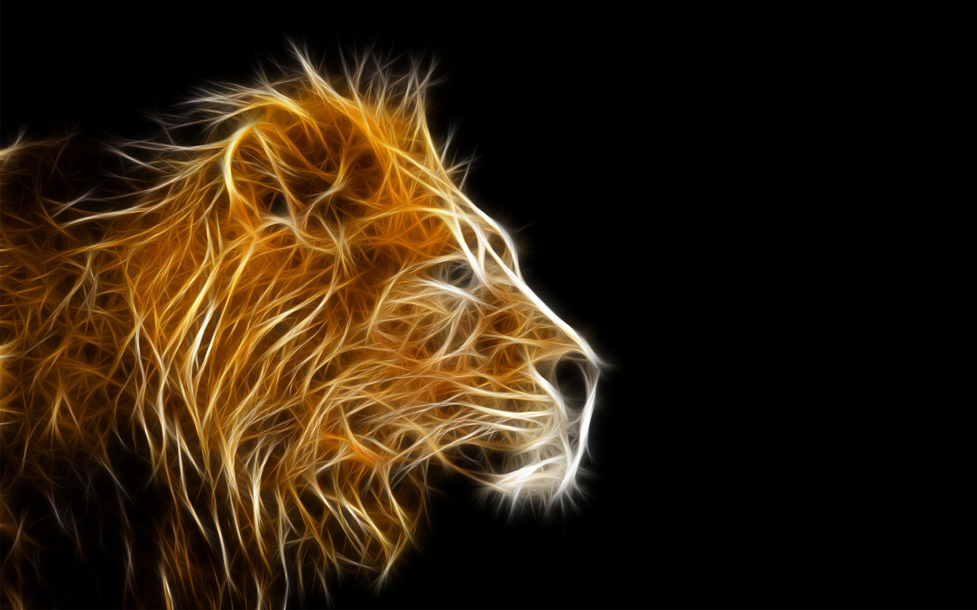 Cool Lion Wallpaper Graphic 3D
