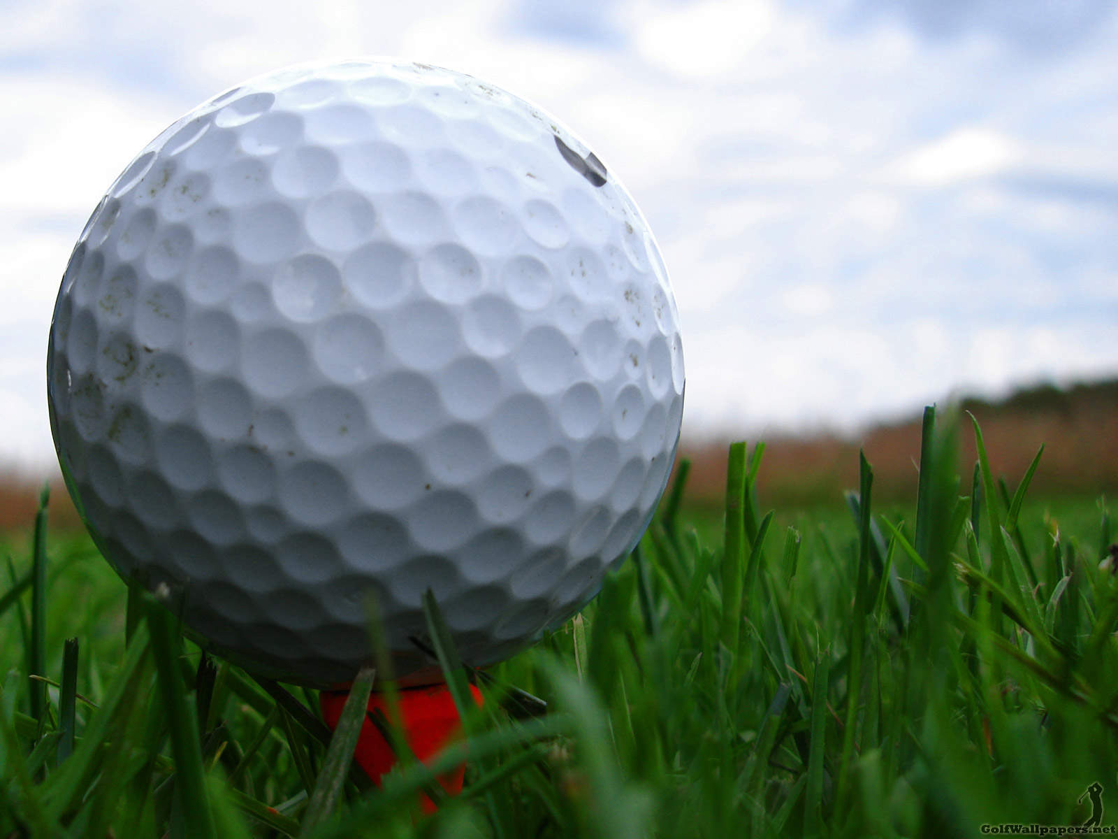 Golf Pictures