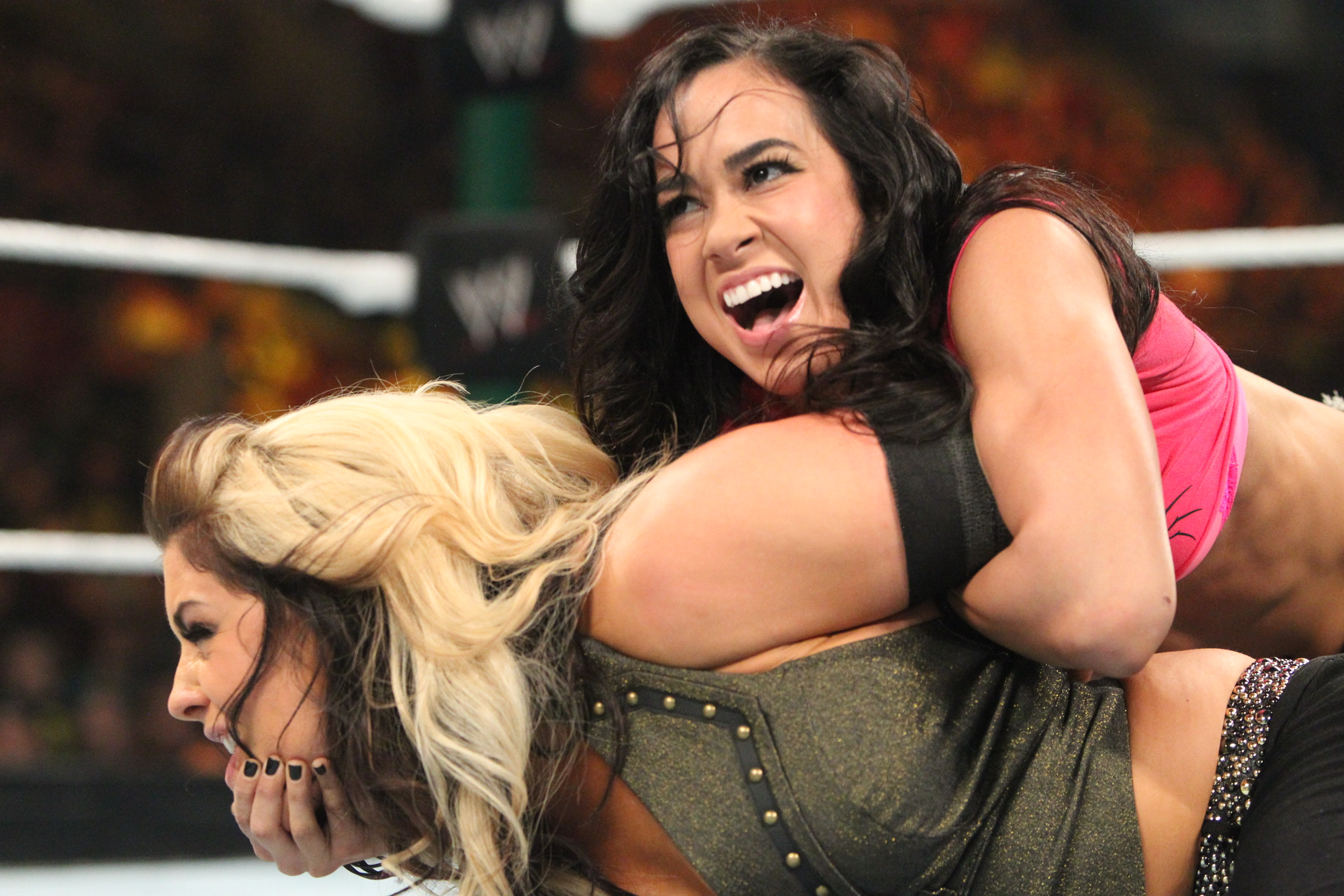 aj lee biography
