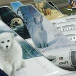 frontier airlines a whole diffrent animals
