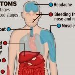 ebola effects