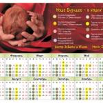 pirelli calendar