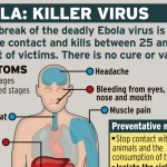 what is ebola
