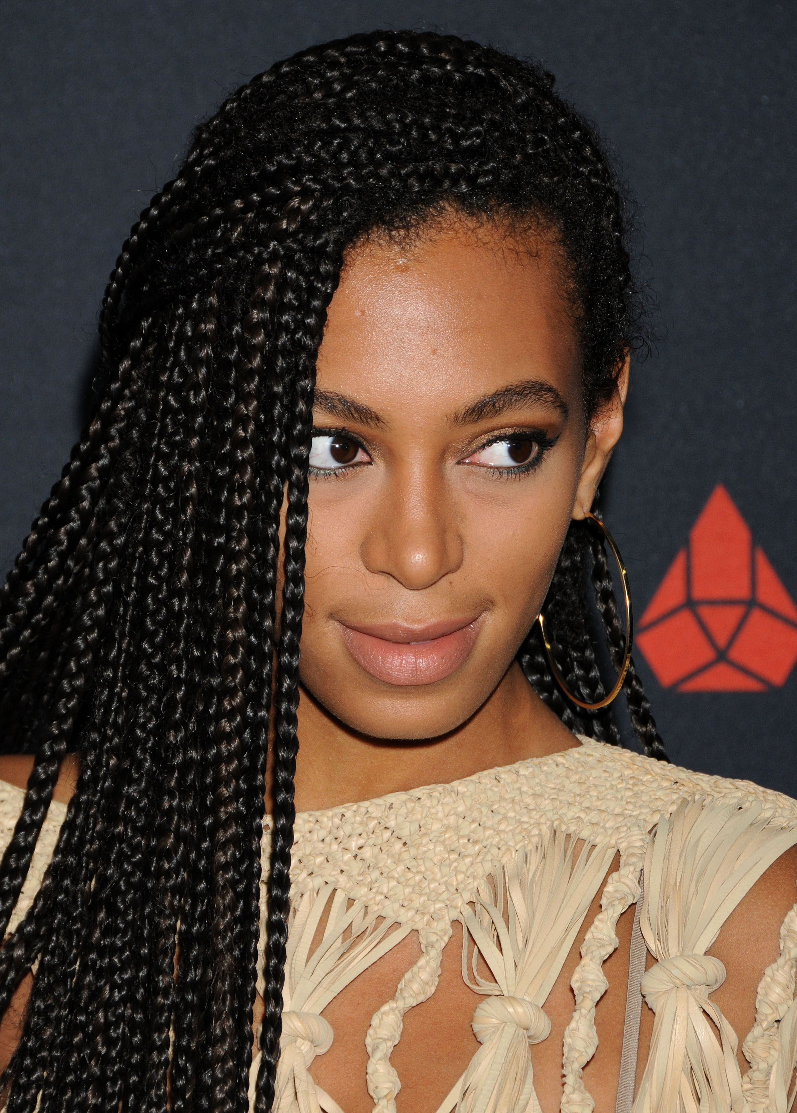 Solange Knowles Nude Photos 70