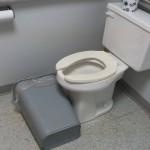 toilet sit