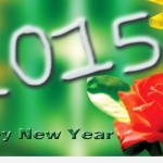 wish you happy new year sms