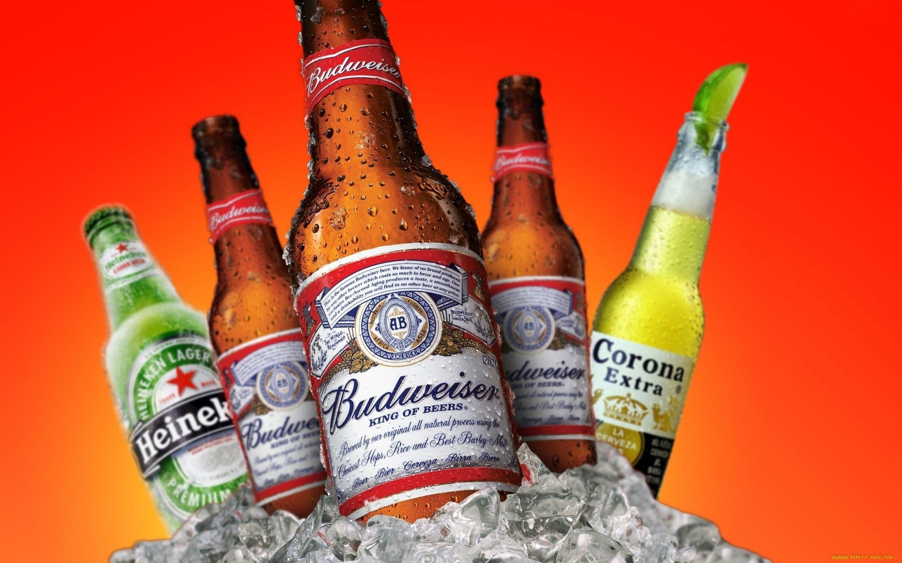 Budweiser HD Wallpapers
