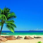 Tropical Beaches In Florida