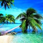 Download Tropical Beach Wallpaper