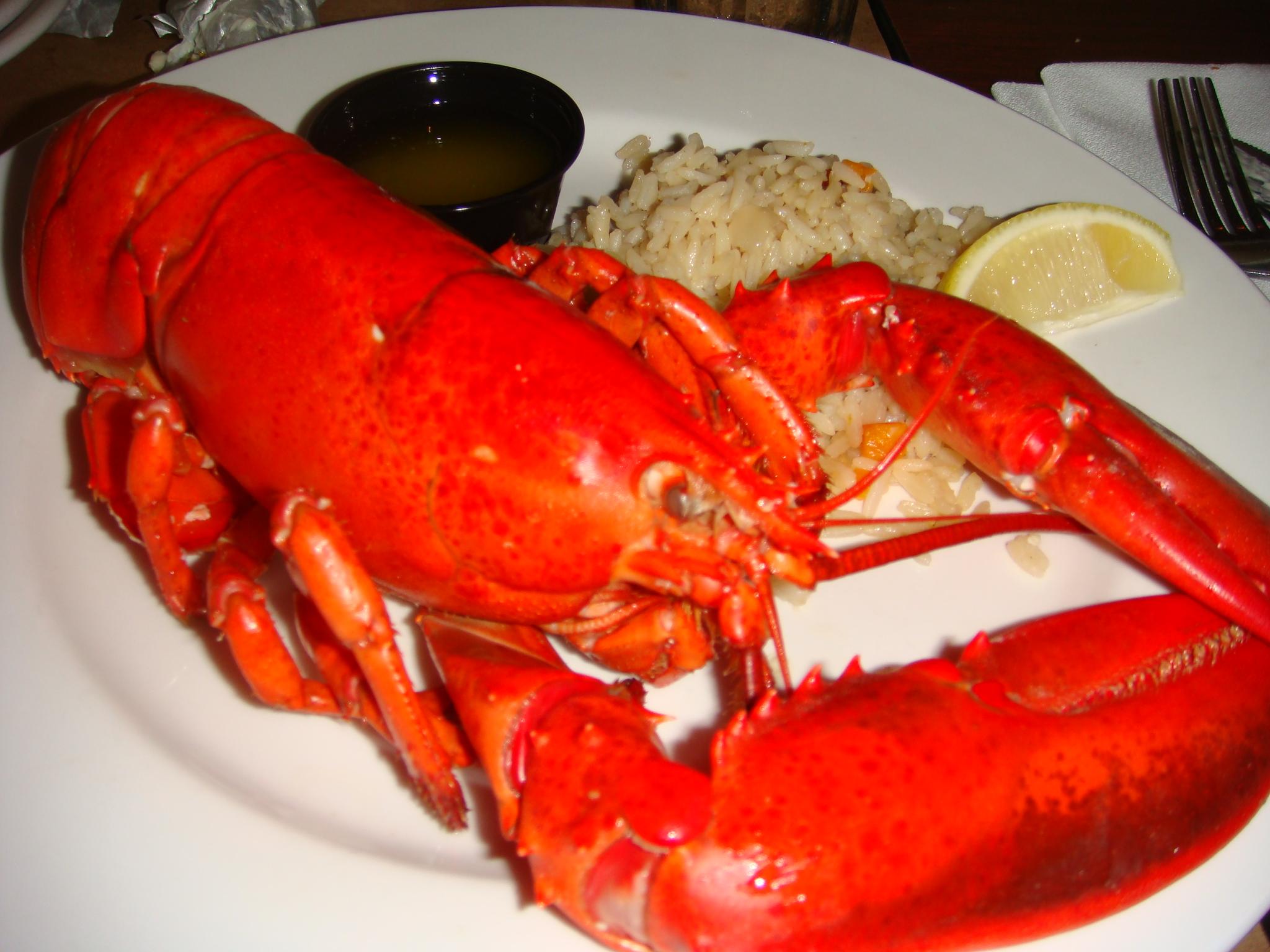 Как готовить лобстеров и омаров Выбираем и готовим омаров Продукты 91
