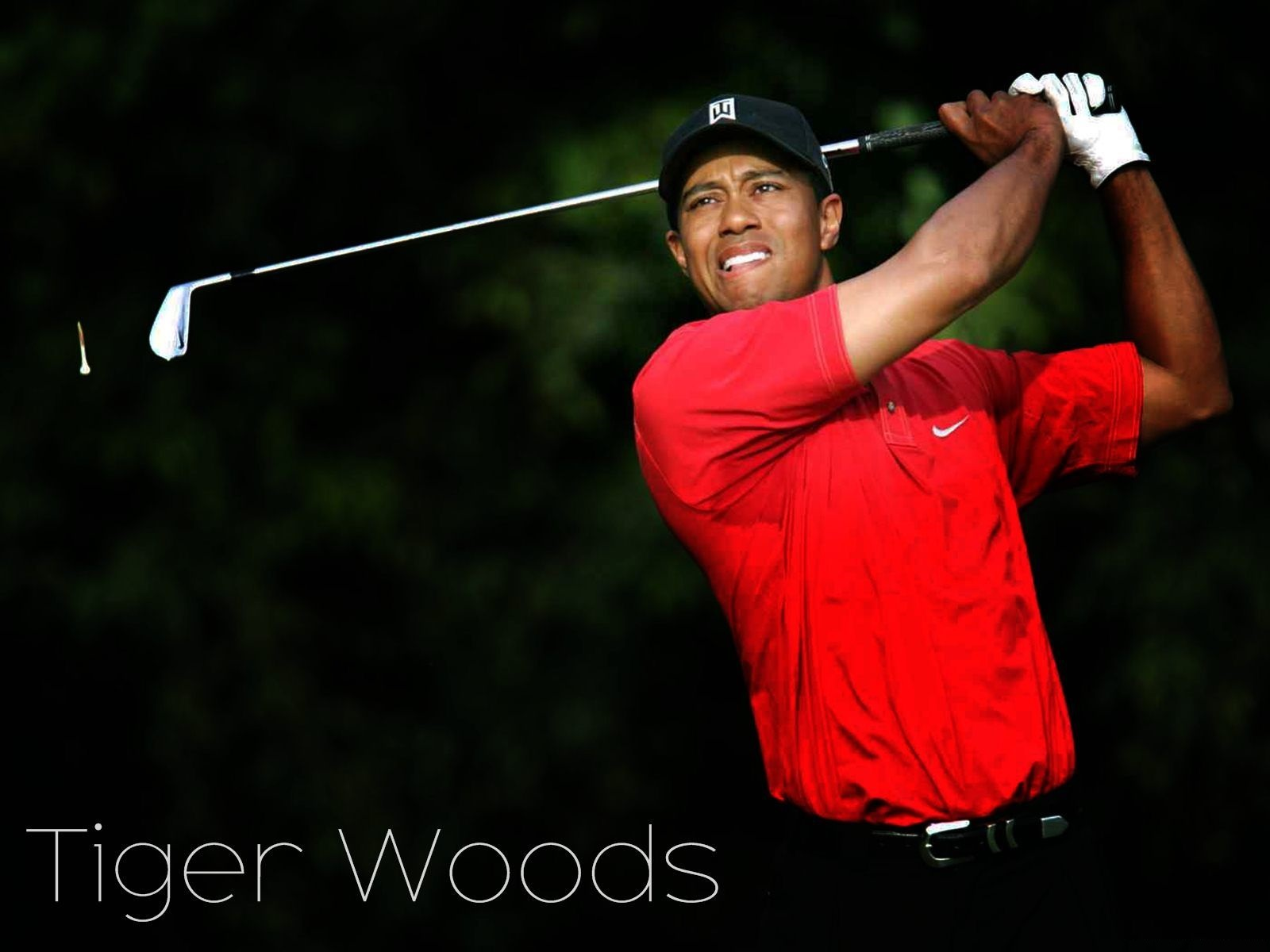 Tiger Woods HD Wallpaper