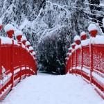 Snow Winter Poems