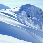 Winter Snow Photos