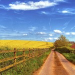 Beautiful road wide high definition wallpaper