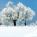 awesome wide hd new wallpaper snow