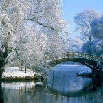 beautiful nature wallpaper snow