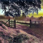 Dreamy rural gate sunset
